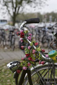 Holland, Volendam (Amsterdam), bicycles parking — Stock Photo
