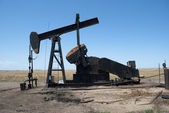 Kansas Oil Pump Jack — Stock Photo