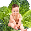 Happy baby boy sitting in cabbage leaves — Stock Photo #7854378