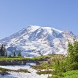Mount Rainier - Photo