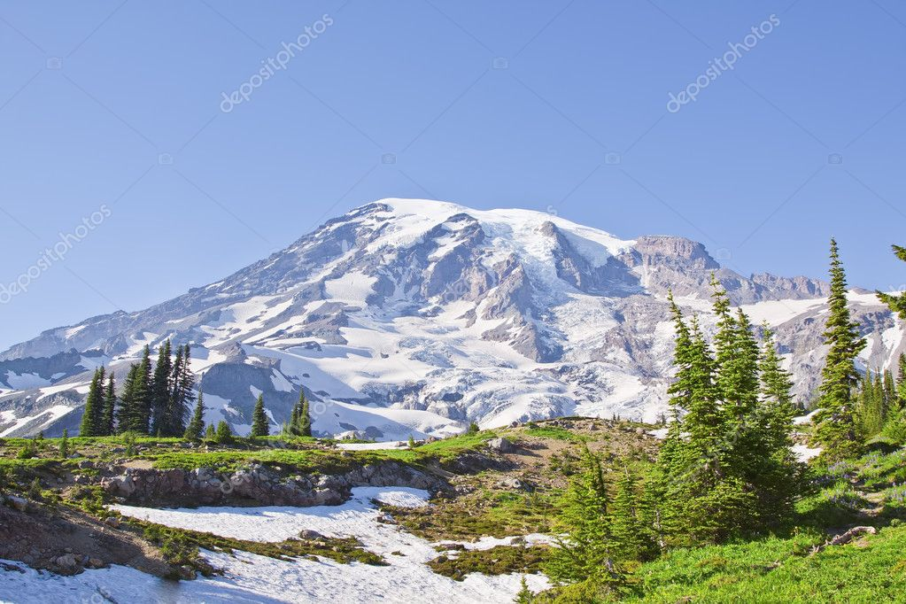 Panorama on a mount Rainier in Washington state  Stock Photo #6809119