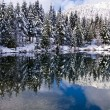 Winter reflection — Stock Photo