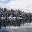 Stock Photo: Winter reflection