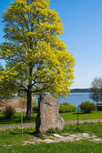 Kamienia runicznego. zamek gripsholm, marifred, szwecja. — Zdjęcie stockowe