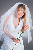 Happy young bride with a chamomille in studio — Stock Photo