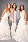 Three beautiful brides posing on studio neutral background — Stock Photo