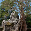 Ta Som temple. Angkor,Cambodia - Stock Photo