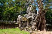 Ta Som temple. Angkor,Cambodia — Stock Photo