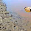 Stock Photo: Rusty Barrel Pollutes River