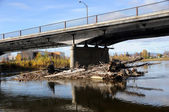 Log Jam on City River — Stock Photo