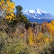 Stock Photo: LSal Mountains in Fall