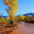 Stock Photo: Desert Stream in Fall with Snowy Mountains