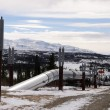 Alaska Oil Pipeline entering Isabel Pass in the Alaska Range — Stock Photo