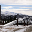 Alaska Oil Pipeline entering Isabel Pass in the Alaska Range — Stock Photo #7230449