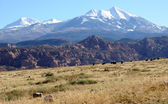 Moab Ranch with view of La Sal Mountains — Stock Photo