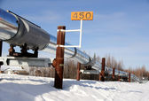 Alaska Oil Pipeline in Winter near Fairbanks — 图库照片