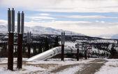 Oleoducto de alaska entrando paso de isabel en la cordillera de alaska — Foto de Stock