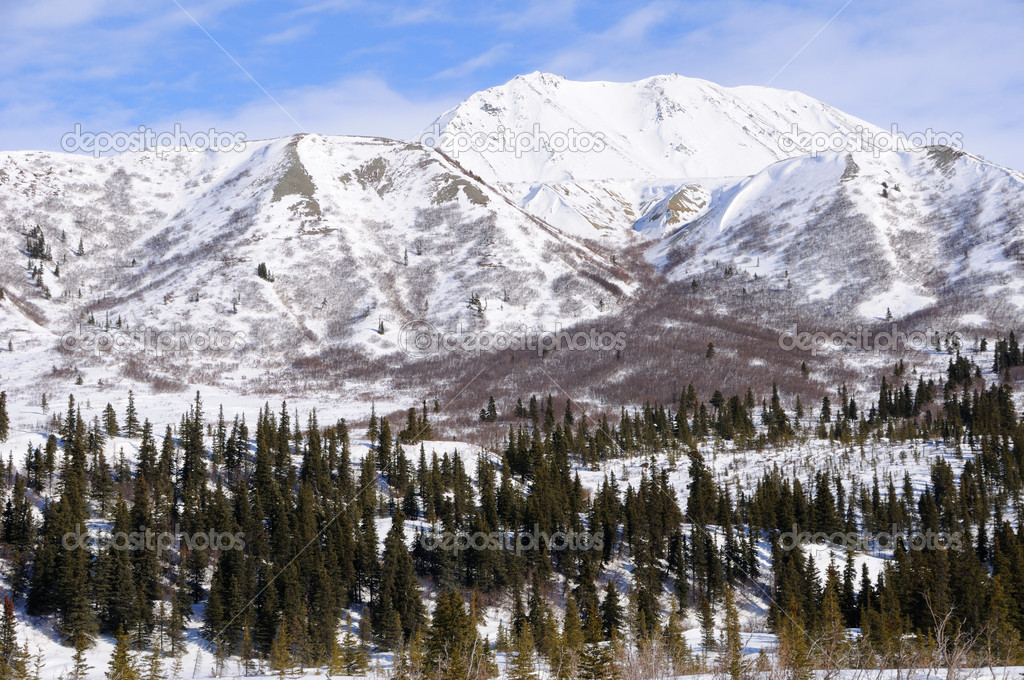 Mountain in Alaska Range in the Spring — Stock Photo #7230508