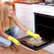 Stock Photo: Cleaning oven