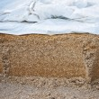 Silage fodder — Stock Photo #7459853