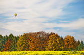 Hot-air balloon with autumnal painted forest — Stock Photo