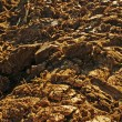 Ploughed Acre — Stock Photo #7525470