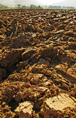 Ploughed Acre — Stock Photo