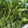 Parsley and dill. — Stock Photo