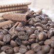 coffee beans — Stock Photo #7322477