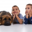 Two brothers with German Shepherd — Stock Photo