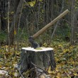 Foto Stock: Axe and stump