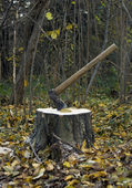 Axe and stump — Foto Stock