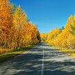 Autumn road. — Stock Photo