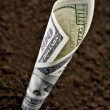 Dollar — Stock Photo #7157363