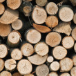 firewoods — Stock Photo #7158319