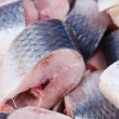Herring — Stock Photo #7160063