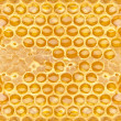 Honeycomb - Foto de Stock