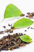 Green tea isolated on white — Stock Photo