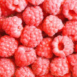 Raspberry — Stock Photo #7234752