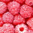 Raspberry — Stock Photo #7234754