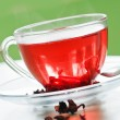 Stock Photo: Red rose tea