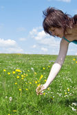 Girl collect flower on meadow — Stockfoto