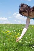 Meisje verzamelen bloem op weide — Stockfoto
