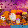 Mexican Day Of The Dead Altar Front View — Photo