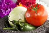 Mexican Salsa Ingredients And Mortar — Stock Photo