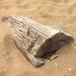 Stock Photo: Dead wood sink in sand.