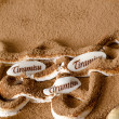 Royalty-Free Stock Photo: Tiramisu
