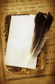 Feather pen on a old parchment — Stock Photo