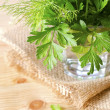 Parsley — Stock Photo #7891651