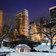 Stock Photo: New York City Manhattan Central Park panorama at dusk
